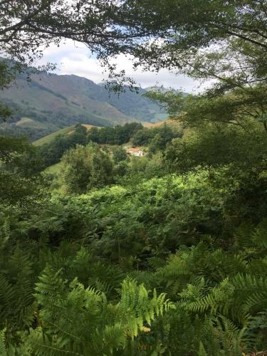 MS01-Maison basque en flanc de montagne